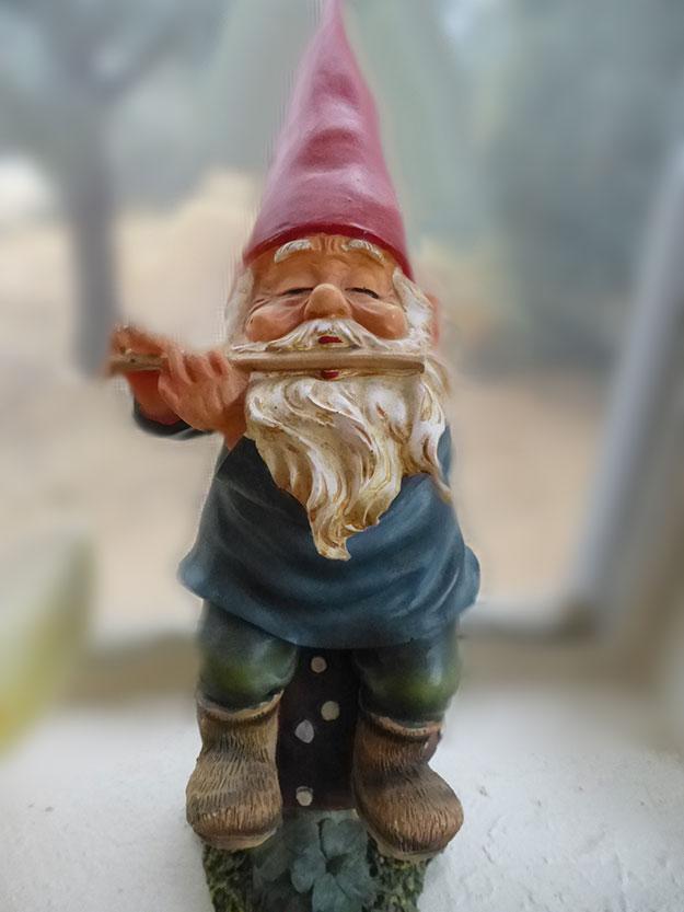 Studio Gnome