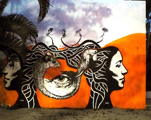 Sayulita mural art