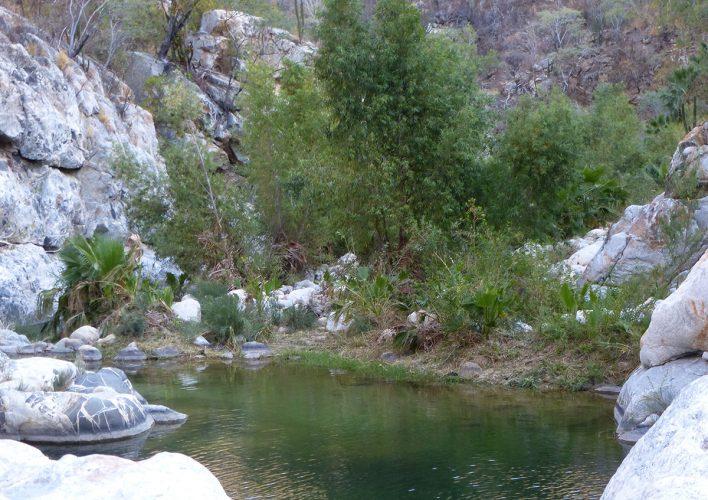 Santiago Waterfall in Baja